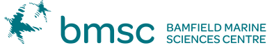BMSC_ID_LockupColour-3